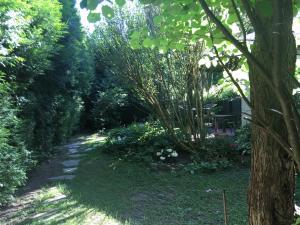 Ein Garten an der Unterkunft Apartment im Nonntal