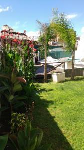 A garden outside Complejo Poblenou