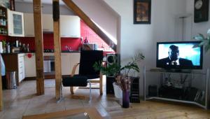 TV a/nebo společenská místnost v ubytování Apartman pod Svatou Horou