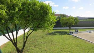 A garden outside Vivenda Maria de Lourdes