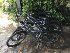 Vožnja bicikla kod ili u okolini objekta Casa Rural Aldea Chica