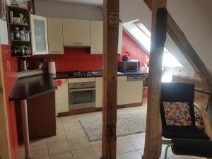 Kuchyň nebo kuchyňský kout v ubytování Apartman pod Svatou Horou