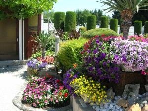 A garden outside Haus Thon