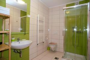 A bathroom at Apartments Nac Bovec