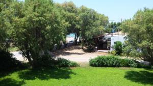 A garden outside Rooms Leonidas