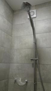 Koupelna v ubytování Apartmány Holiday