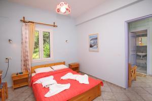 Легло или легла в стая в Panorama Studios