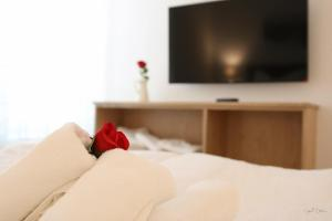 טלויזיה ו/או מרכז בידור ב-Nadland Apartment Kunzgasse