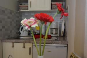 Küche/Küchenzeile in der Unterkunft Ferienapartments Urlaub und Meer