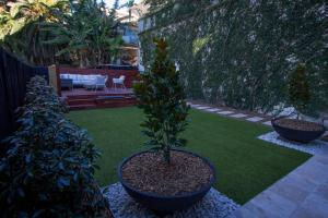 A garden outside Oceanview House - Dover Heights/Vaucluse