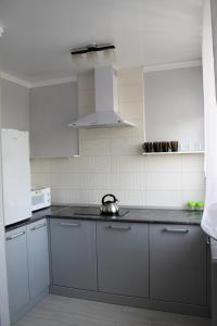 Кухня или мини-кухня в Апартаменты на Володарского 27