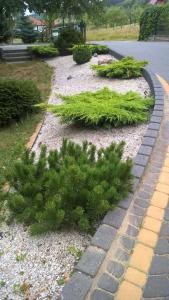 Ogród w obiekcie Apartments Dom Całoroczny