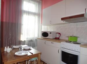 A kitchen or kitchenette at Apartment Kutuzovskya 2/1