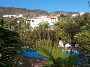 Pemandangan kolam renang di Apartamentos Villa Colon atau di dekatnya