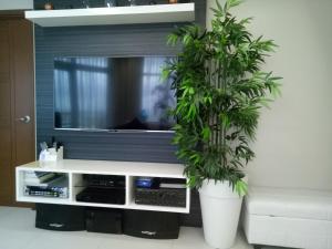 Телевизор и/или развлекательный центр в Sally's Place at Eastwood Le Grand 3