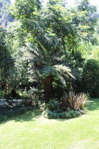 สวนหย่อมนอก Mundees of Hilton