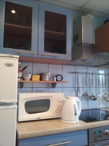 Majoituspaikan Astra City Centre Apartment keittiö tai keittotila