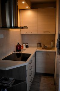 Kuchyňa alebo kuchynka v ubytovaní DRAGON Apartments (Helena)