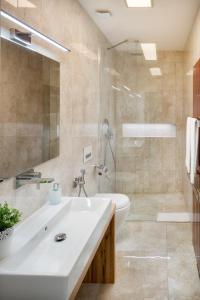 Ένα μπάνιο στο Veleslavinova Apartment