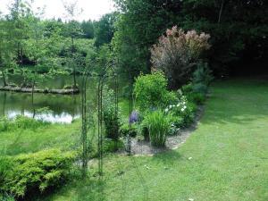 A garden outside Ferienwohnung Pietzavka