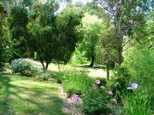 A garden outside Alpine Park Riverside Cottages