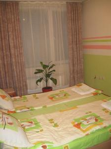 מיטה או מיטות בחדר ב-Apartment Chatalzdha