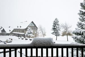 Baqueira Apartamentos Cota 1700 en invierno