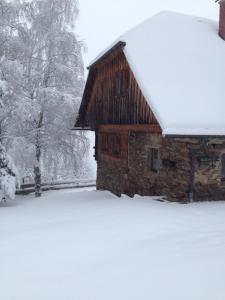 Almhaus Bachler im Winter