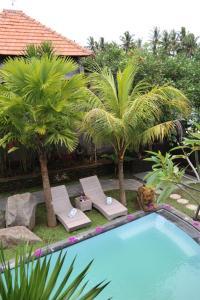 Vista de la piscina de AS Resort o d'una piscina que hi ha a prop
