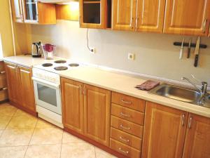 A kitchen or kitchenette at Apartments on Nadsonovskaya 24
