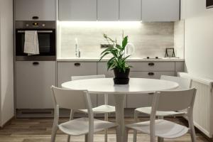 A kitchen or kitchenette at Old Town Trio Apartments