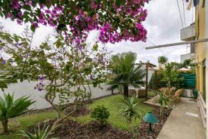 A garden outside epicenter LAGOA