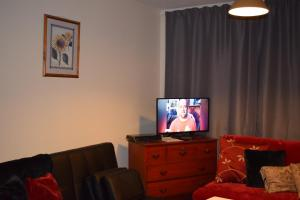 A television and/or entertainment center at Dublin Apartment
