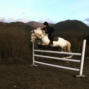 Horseback riding at the holiday home or nearby