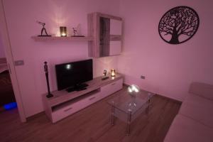 TV in/ali zabaviščno središče v nastanitvi Apartments Miki's