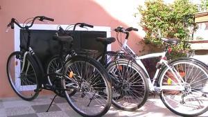 Biking at or in the surroundings of Casa La Torreta