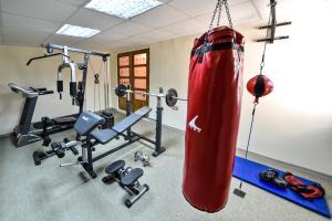 Fitness centrum a/nebo fitness zařízení v ubytování Villa Dub