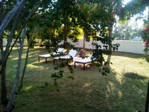 Ogród w obiekcie Maison Amantine