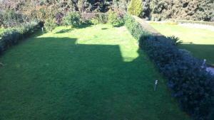 A garden outside Dimitra's House