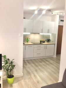 Kuchnia lub aneks kuchenny w obiekcie Apartament Gałczyńskiego