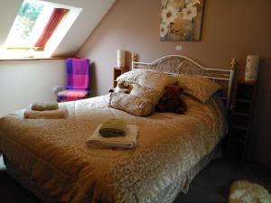 A bed or beds in a room at cwmddol fawr cottage