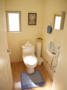 A bathroom at Blue Ocean Misaki B