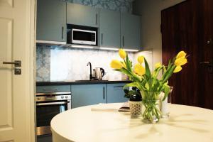 Virtuvė arba virtuvėlė apgyvendinimo įstaigoje JessApart – Ochota Apartments