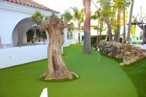 Jardín al aire libre en Hotel Apartamentos Manilva Sun