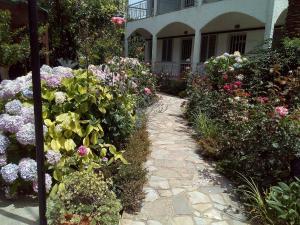 A garden outside Margarita Apartments