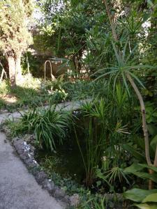 A garden outside Seaside Villa Katrine