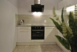 A kitchen or kitchenette at City Park Apartments