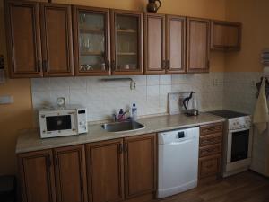 Kuchyň nebo kuchyňský kout v ubytování Apartmán Kamila
