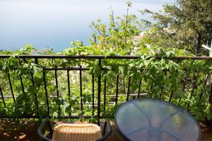 A balcony or terrace at Apartments Goran