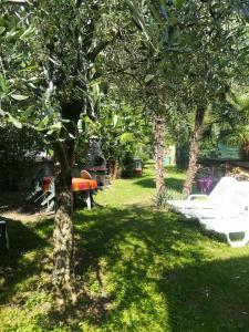 Zahrada ubytování Residence Mezzosole